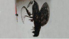 Viral del día: ¿qué figura se esconde detrás del graffiti?