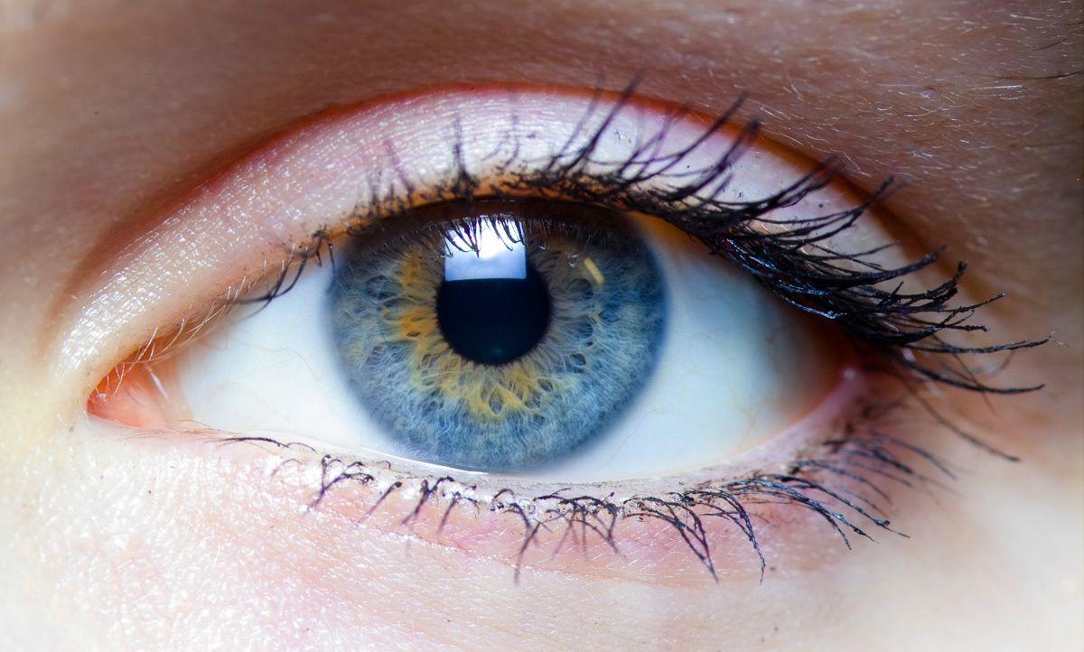 Un test de visión que te dirá qué tipo de persona sos