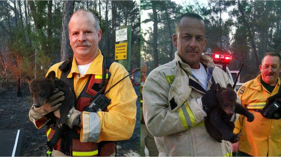 Unos bomberos rescataron a una cría de oso de un incendio forestal