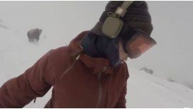 Hacía snowboard y lo persiguió un oso