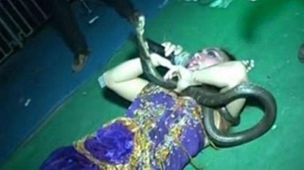 Una cantante murió en el escenario tras ser picada por una de sus cobras