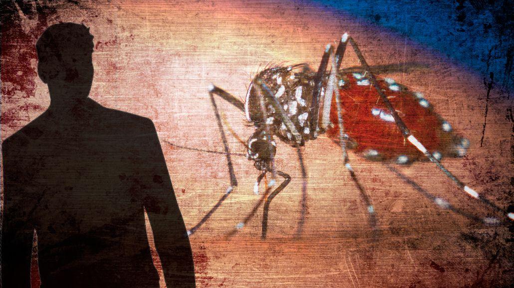 Reportaron el primer casi de dengue en La Pampa