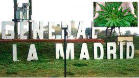 General La Madrid, el pueblo donde todos quieren cultivar marihuana