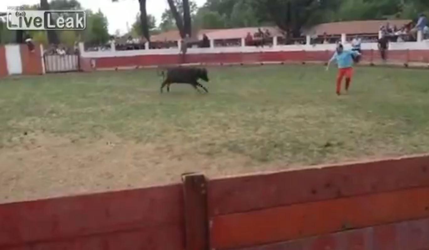 VIDEO: Vestido de rojo provocó a un toro y el animal tuvo su revancha