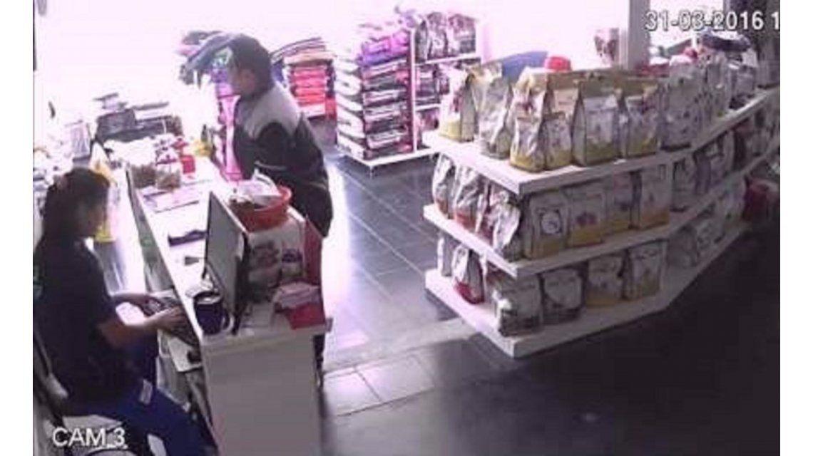VIDEO: Robó una veterinaria, encerró a las empleadas y salió caminando