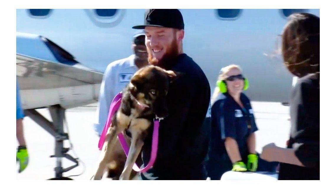 Rescatan a una perra náufraga que estuvo 5 semanas perdida en altamar