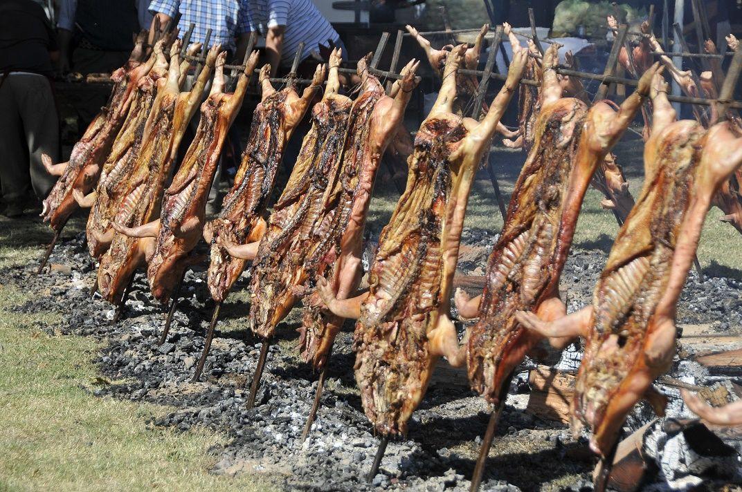 ¿Te gusta el cerdo? Hacen una lechonada con 1.000 animales al asador