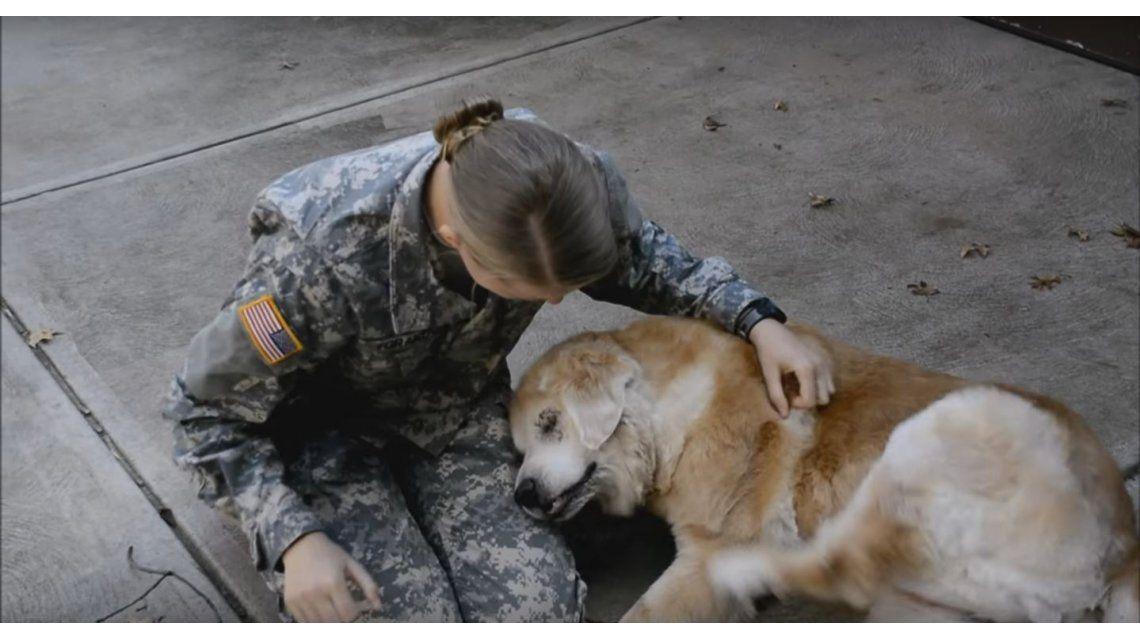 VIDEO: Mirá la reacción de una perra cuando se reencuentra con su dueña soldado