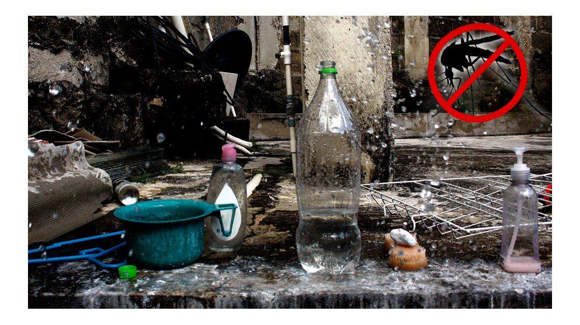 Dengue: mitos y verdades para prevenir el contagio