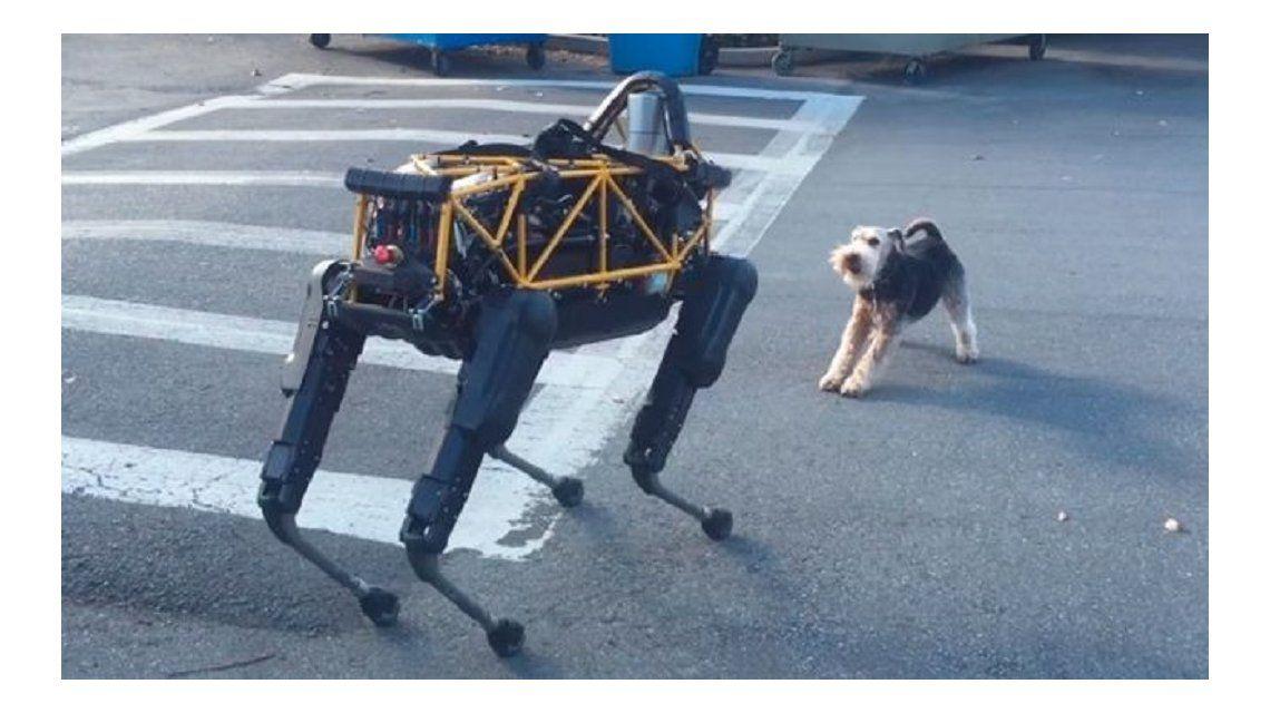 Así fue el encuentro entre un perro robot y uno real