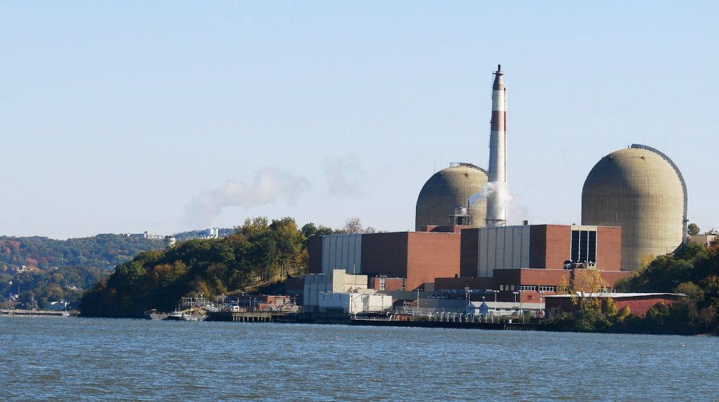 Una planta nuclear de Nueva York se quedó sin energía por excremento de aves