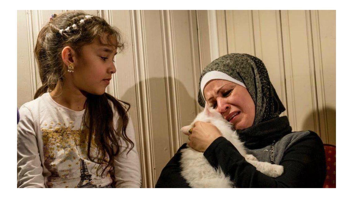 El gato refugiado se reencontró con su familia después de tres meses