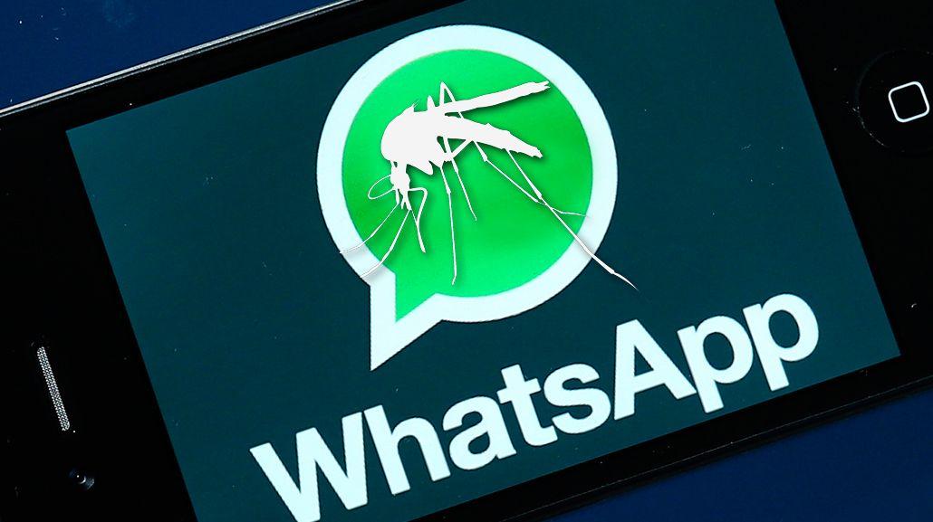 ¿Será verdad? El audio de WhatsApp sobre el dengue que preocupa a las madres