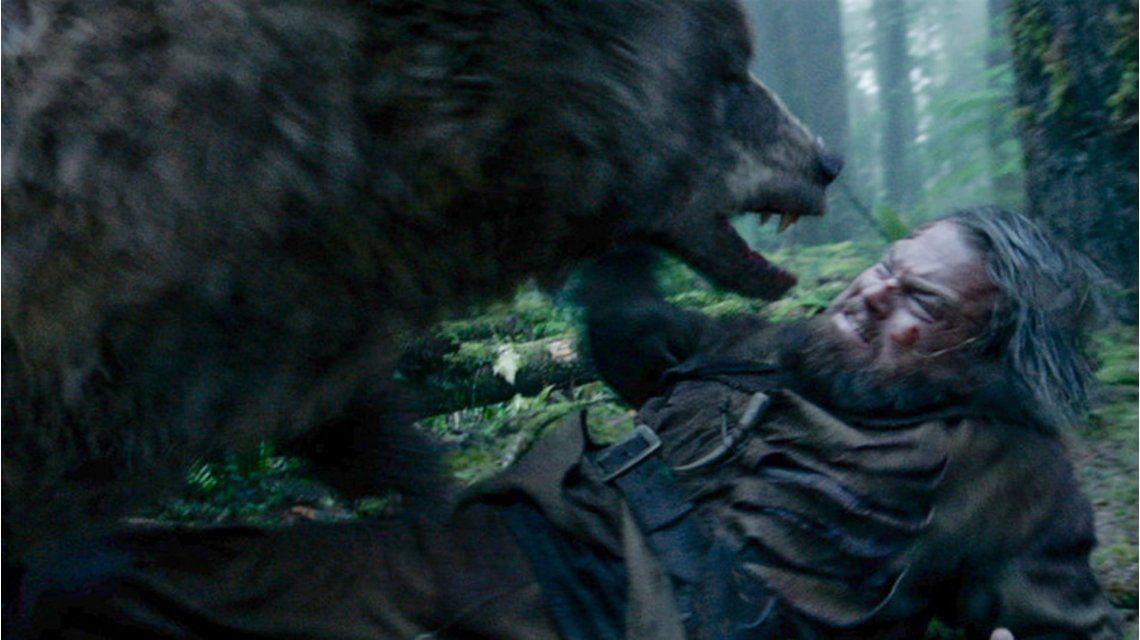 No está nominado, pero fue igual: el oso de El Renacido sorprendió en los Oscar