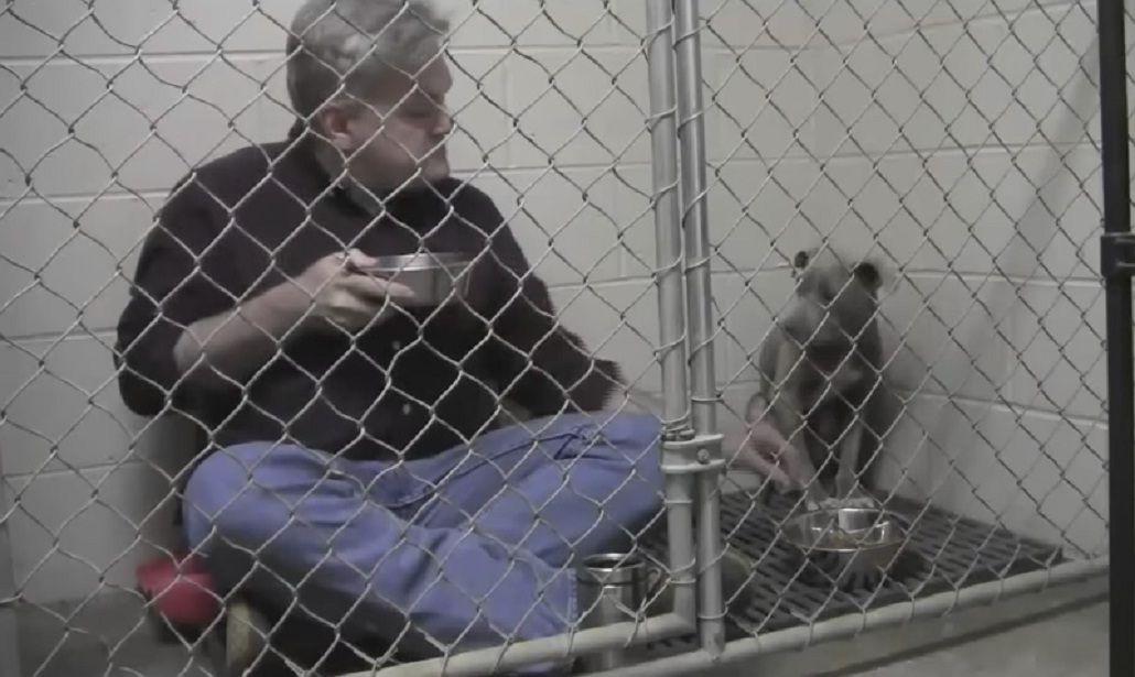 Un veterinario se metió en la jaula de un perro para desayunar juntos