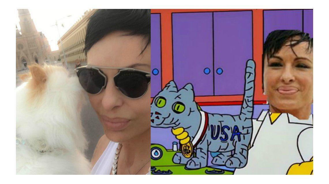 Los memes por el gato embalsamado de Daniela Cardone