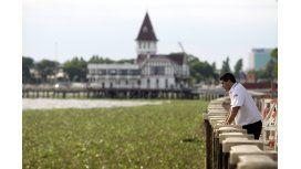 Por los camalotes, podría faltar agua en zonas de la Ciudad y el conurbano