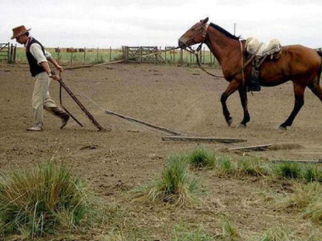 Tragedia: un nene de 6 años murió al caer de un caballo