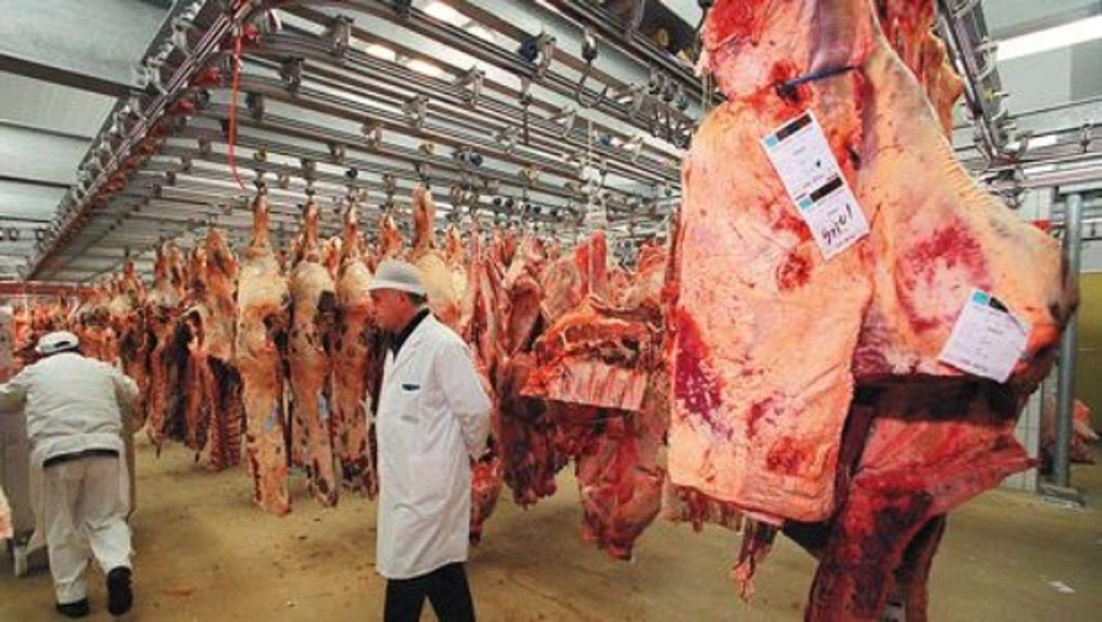 La Unión Europea levantó la restricción de importación de carne argentina