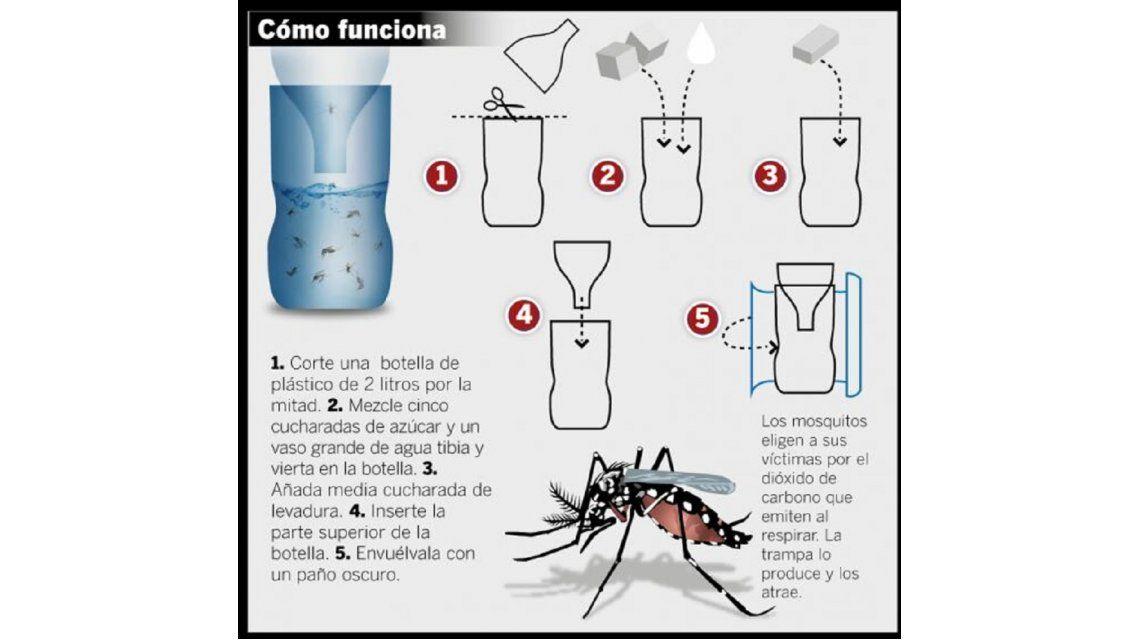 El método casero contra el dengue que se volvió viral