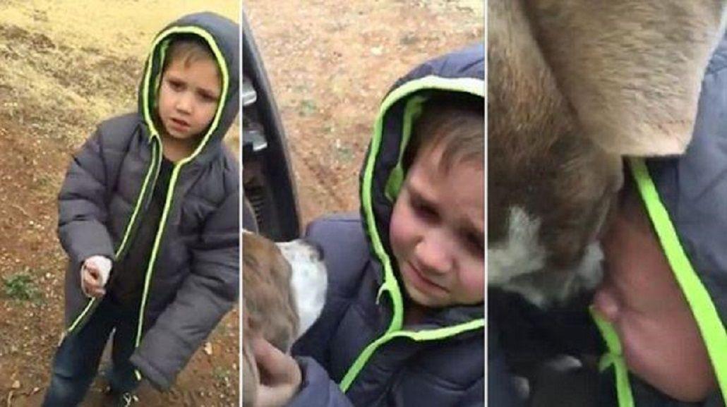 VIDEO: Un nene se reencuentra con su perro y emociona a todos