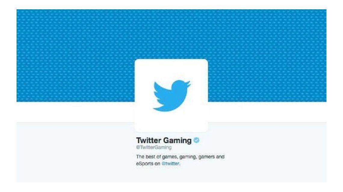 Twitter se mete de lleno en el mundo de los videojuegos