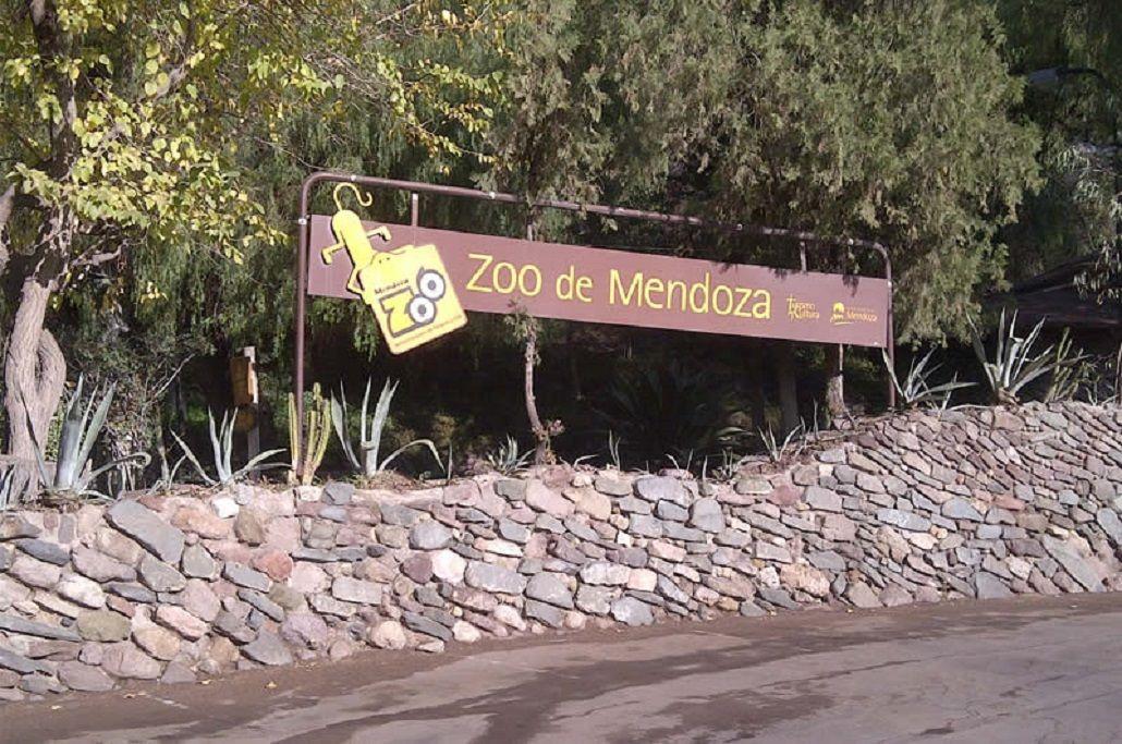 Tres ciervos murieron en el Zoo de Mendoza y ya son 14 los animales fallecidos