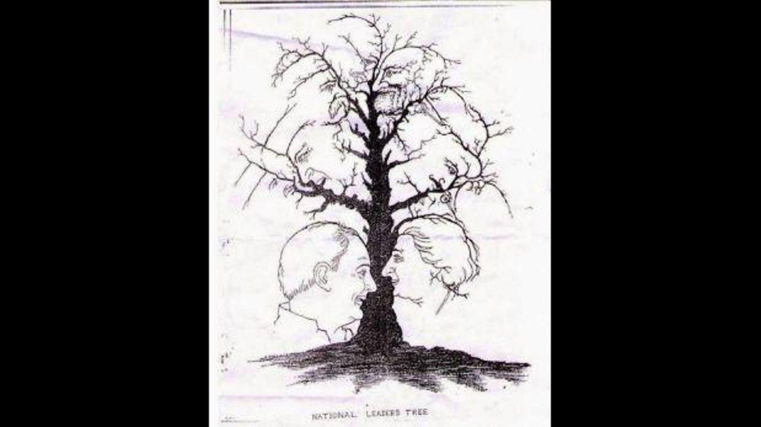Nuevo reto: ¿cuántas caras puedes ver en este árbol?