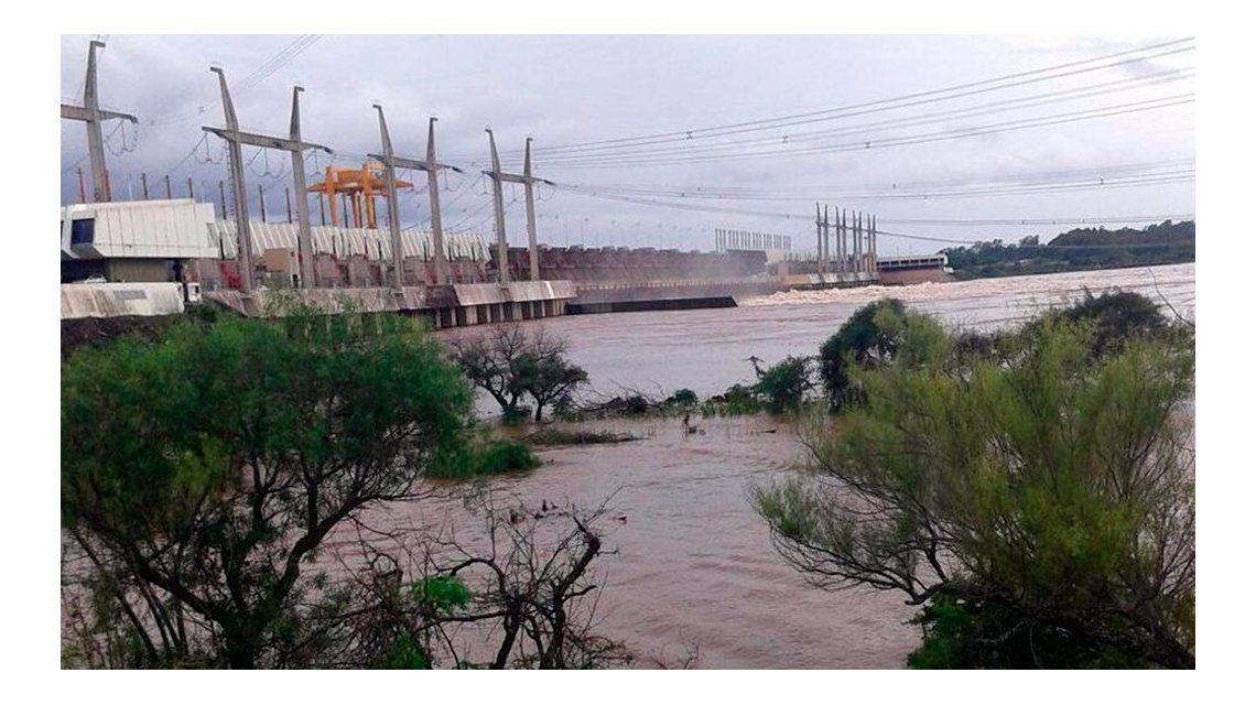 Dos niñas fueron mordidas por  serpientes en zonas inundadas de Entre Ríos