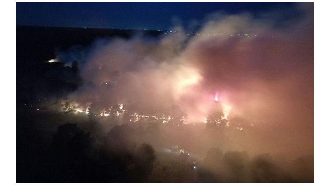 Un voraz incendio afectó a una reserva forestal en Mar del Plata