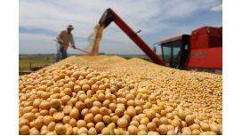 Marcha atrás: Macri postergó la baja de retenciones a la soja hasta 2018