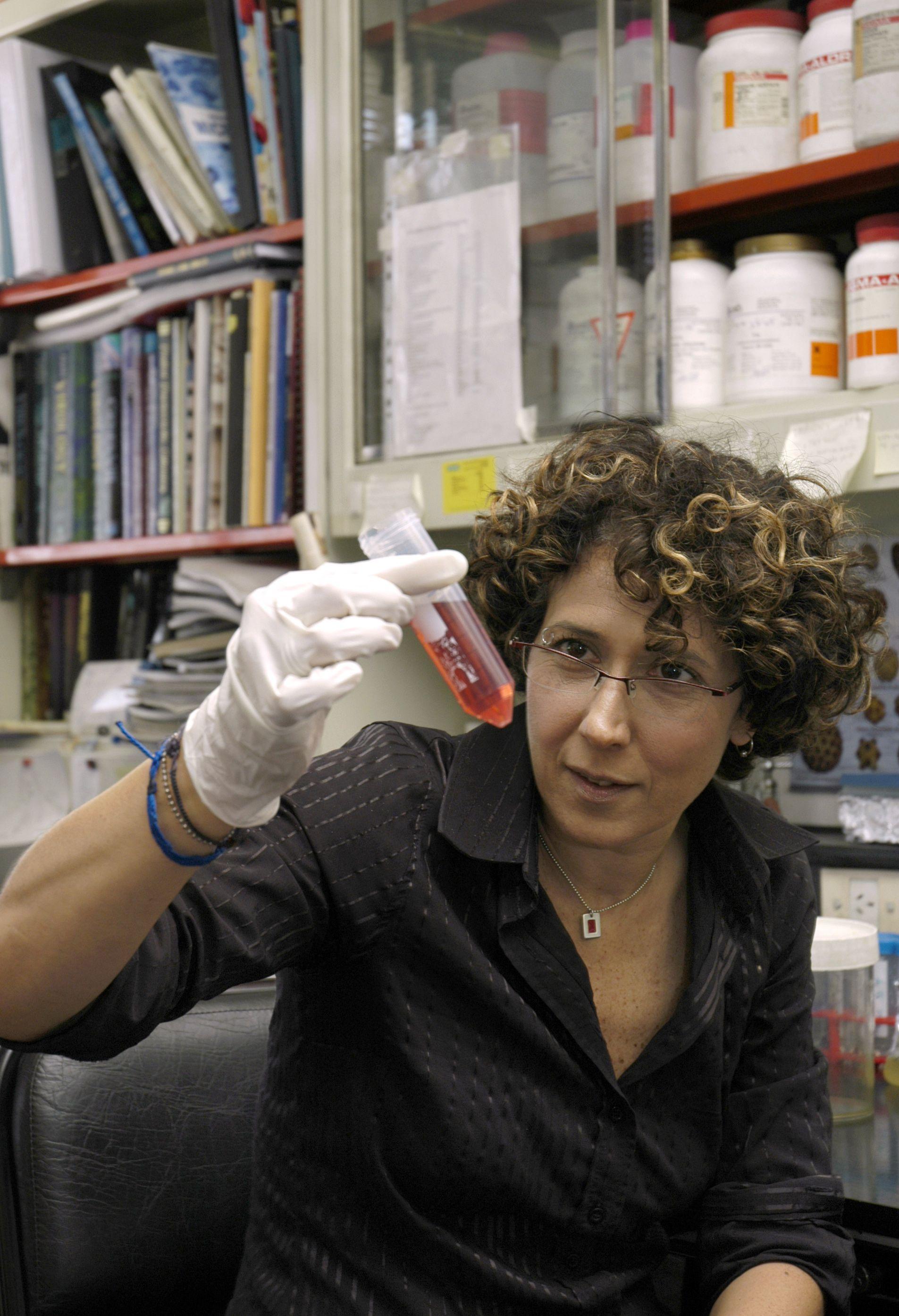Premian a científica argentina por sus aportes sobre el virus del dengue