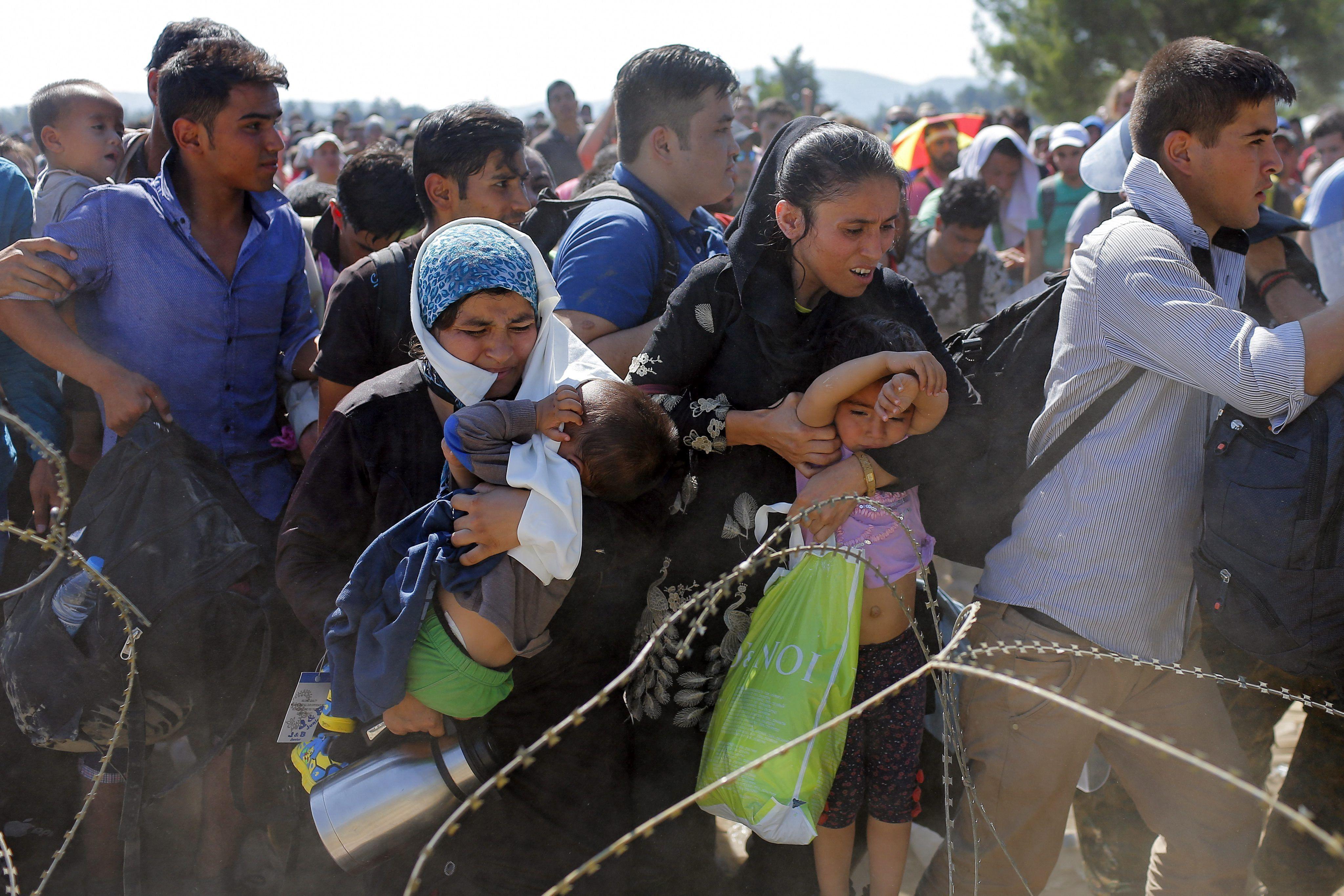 Efecto Aylan: Alemania y Austria anunciaron que recibirán a refugiados