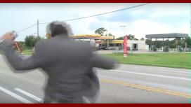 Un reportero es perseguido por una avispa