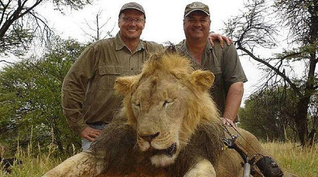 Todos libres: Zimbabwe no juzgará al organizador de la cacería del león Cecil