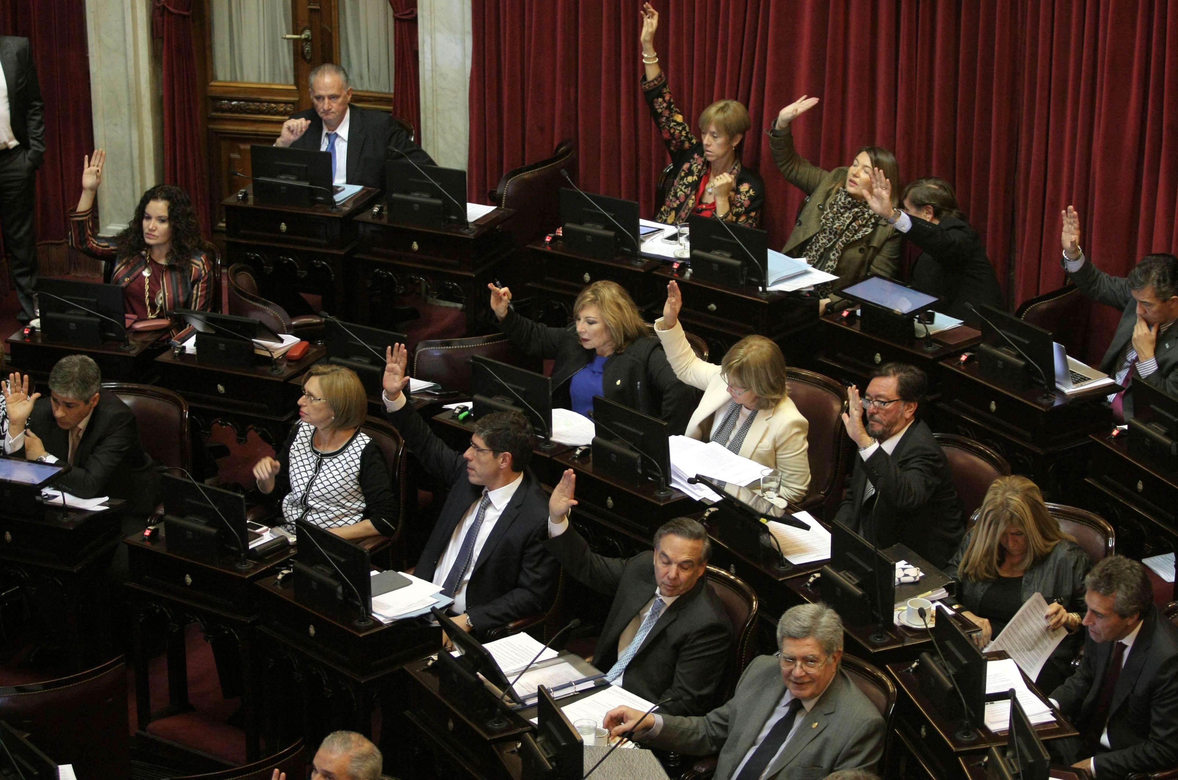El Senado debatirá este miércoles la ley de asignaciones familiares