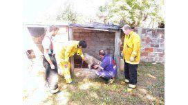 Rescatan a perro tras varios días en un pozo