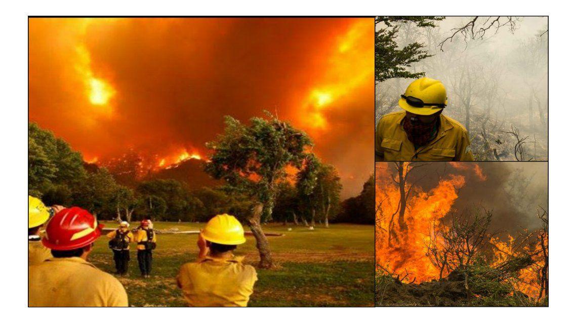 Los incendios arrasaron con más de 41 mil hectáreas en Chubut