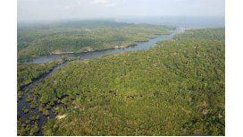 Usarán drones para combatir la deforestación y contaminación
