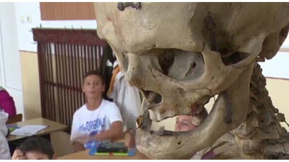Insólito: un docente donó su esqueleto a la escuela donde trabajó