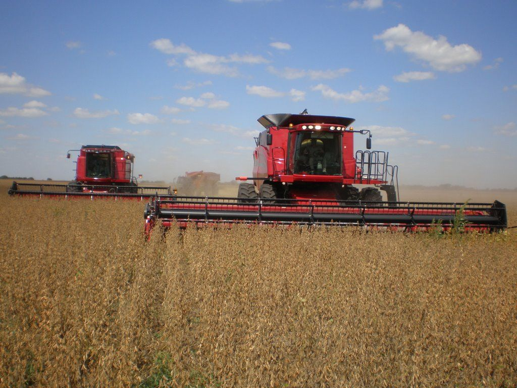 El complejo agroexportador