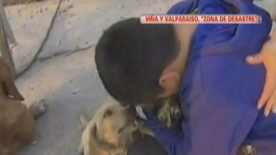 El emotivo encuentro de un nene con su mascota tras el incendio en Valparaíso