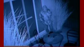 Cómo fue el robo a la casa de Sergio Massa en Tigre