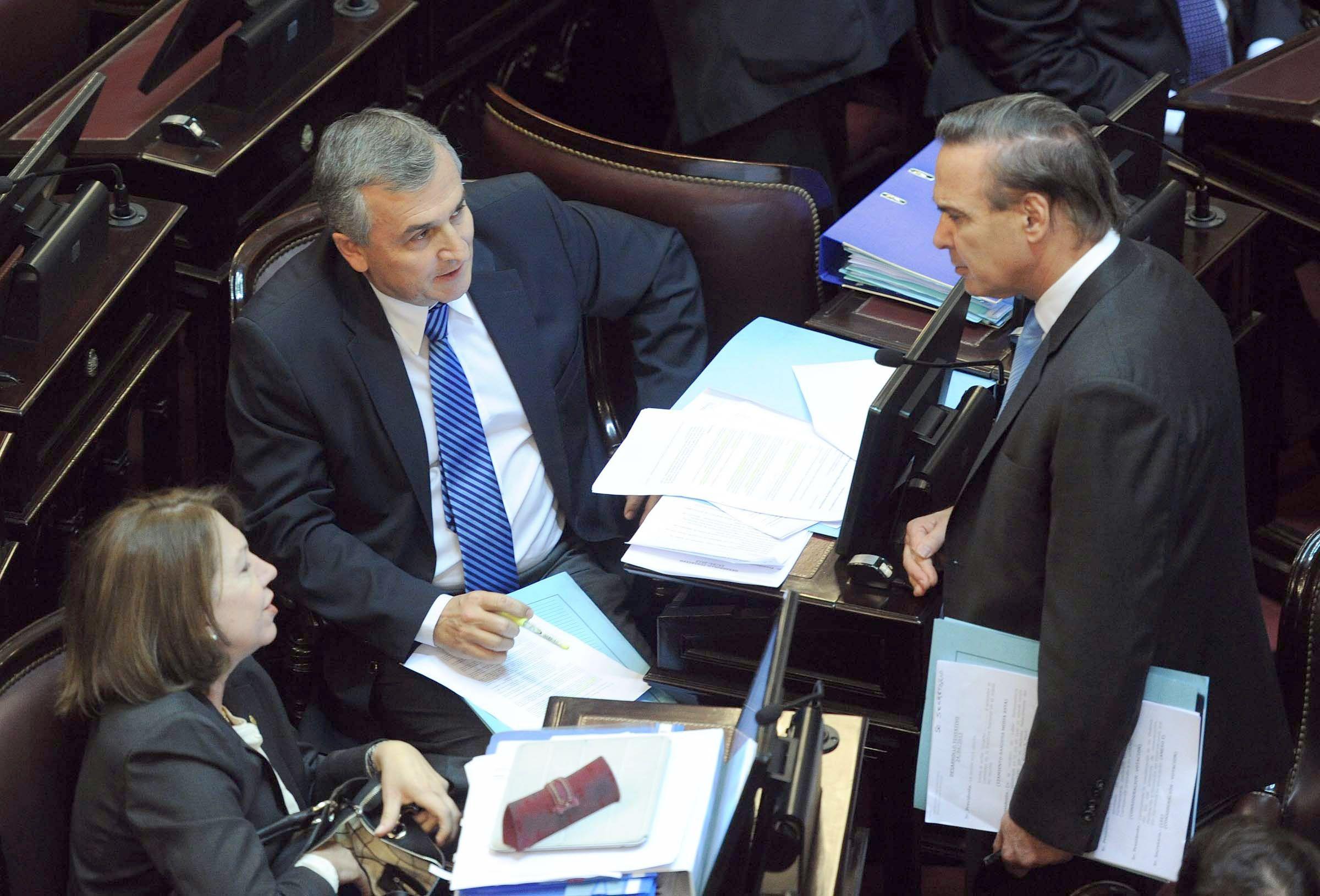 El Senado aprobó un texto modificado sobre fertilización asistida