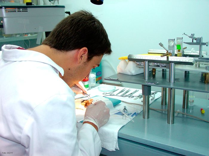 Los 5 avances científicos más importantes de 2012