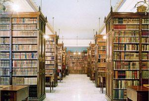 Biblioteca-de-la-real-acade