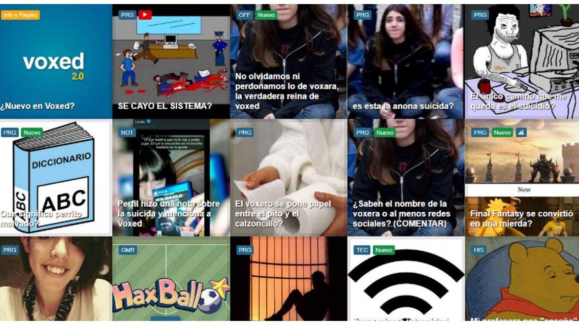 Qué es Voxed, la red social en donde la joven anunció que se iba a matar