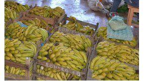 Bananazo en Plaza de Mayo