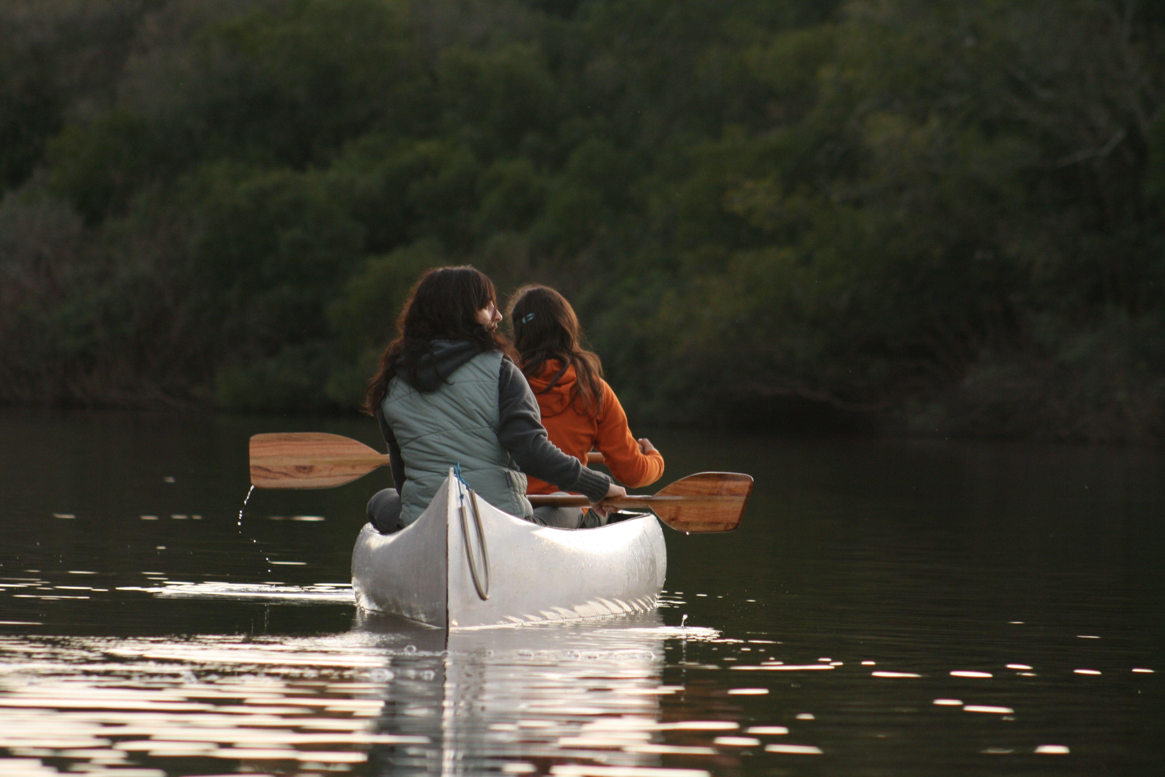La paz del arroyo, la exuberancia de la vegetación<br>