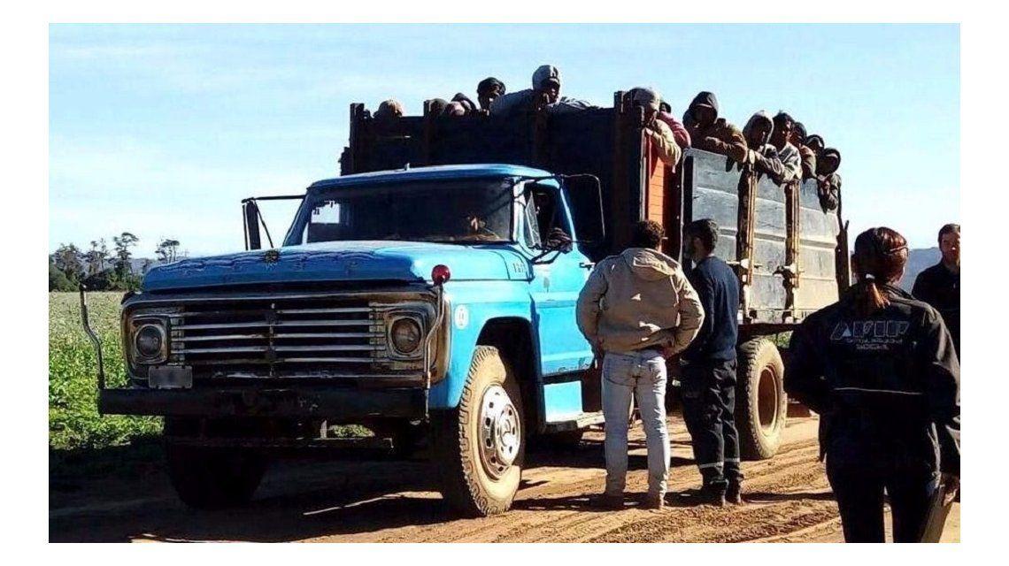 AFIP encontró 94 trabajadores reducidos a servidumbre en Salta – Crédito: eltribuno.info